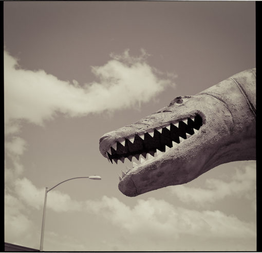 Holbrook AZ dinosaur eating lamp post